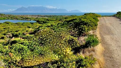 Cycling in Koeberg Nature Reserve