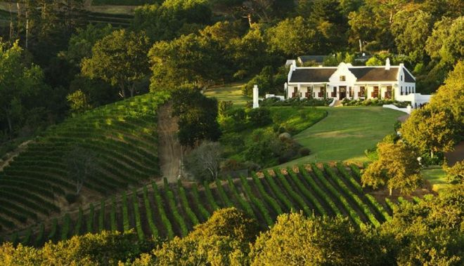 The Constantia Wine Route