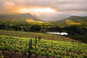 Franschoek Wine Valley