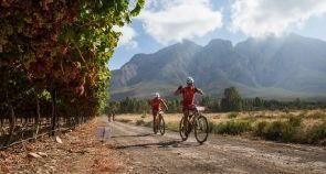 Meerendal Mountain Bike Trails