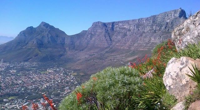 Hike Table Mountain & Lion's Head