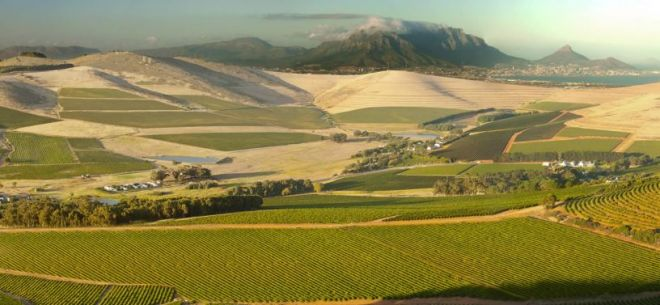Durbanville Wine Valley